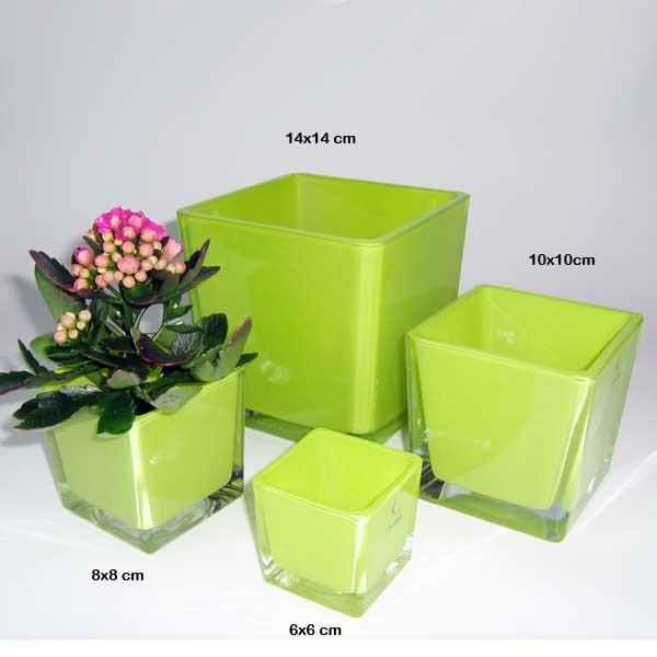 vierkantgef glas eckard quadratisch eckig pflanzgef pflanztopf topf 14cm gr n floristik. Black Bedroom Furniture Sets. Home Design Ideas